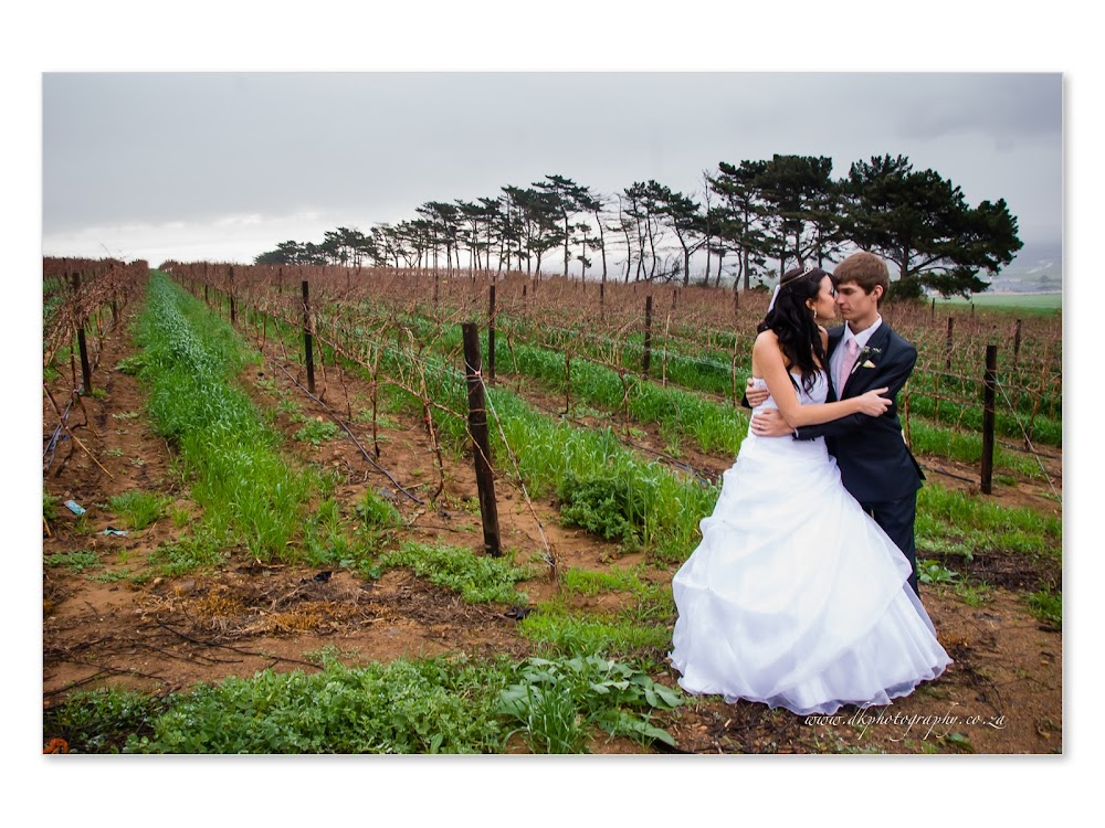DK Photography DVD+Slideshow-317 Cindy & Freddie's Wedding in Durbanville Hills  & Blouberg  Cape Town Wedding photographer