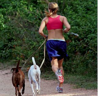 Woman jogging with her dogs.  - Stock Photo Credit: cempey