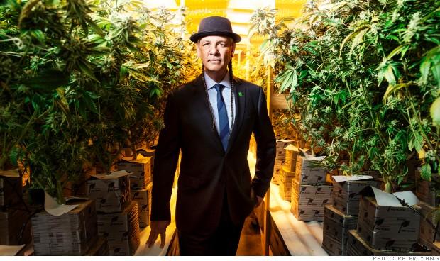 marijuana brand