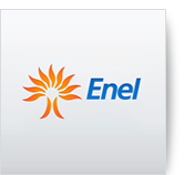 Enel, an Italian electricity company