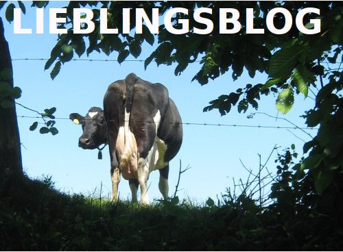 <center>Lieblingsblog</center>