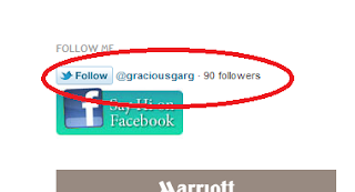 Today's Trendy: Twitter FOLLOW button for websites