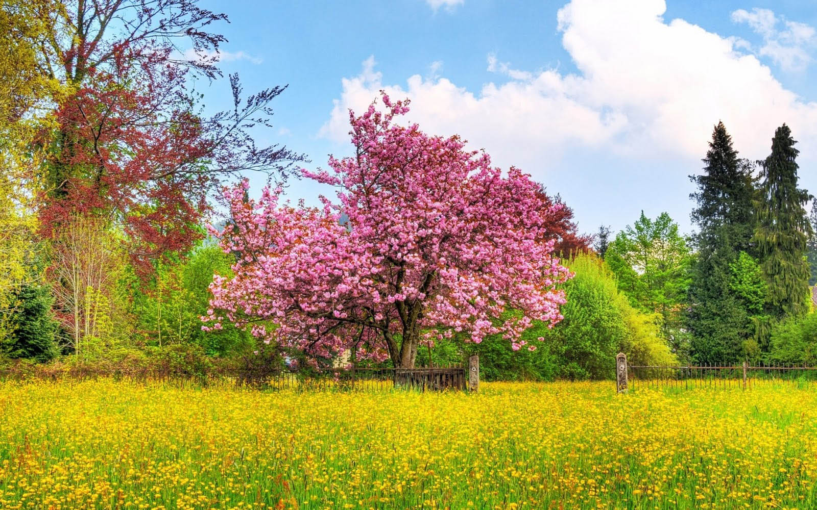 wallpapers: Spring Desktop Wallpapers and Backgrounds
