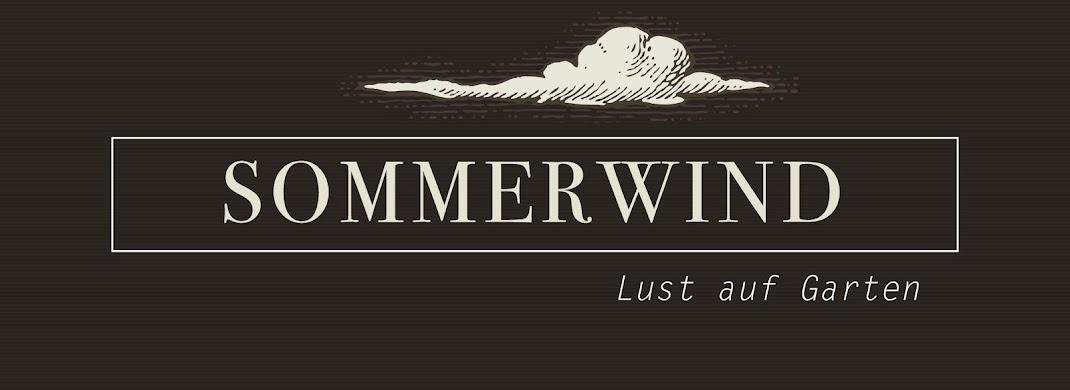 Sommerwind.