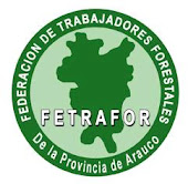 FETRAFOR