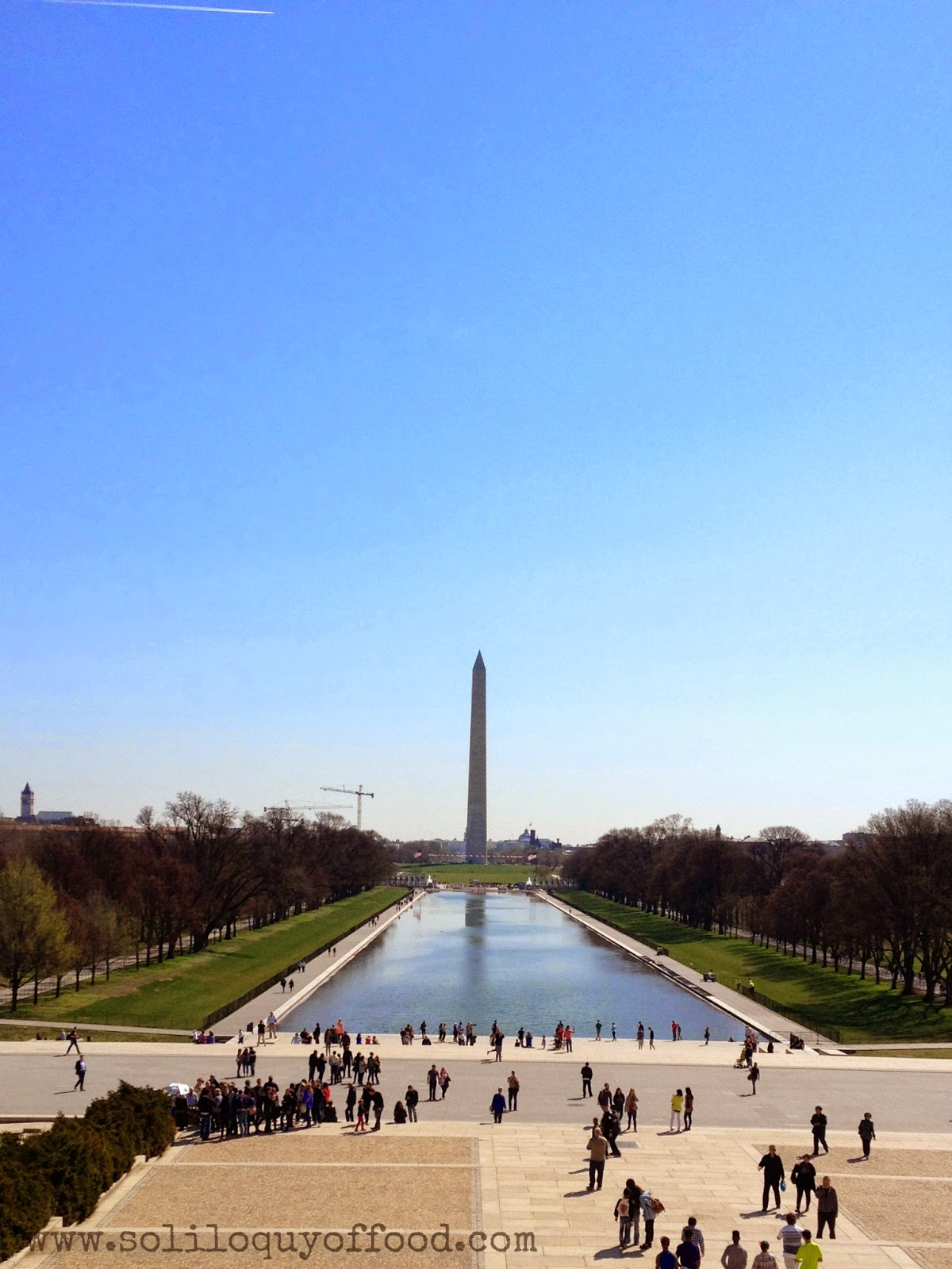Lincoln's View Of The Reflecting Pool - Cherry Blossoms 2014 - www.soliloquyoffood.com