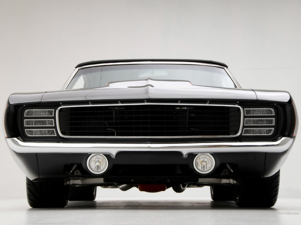 Tough for this Ford guy to admit; the Camaro for '69 was one of ... Red Throated Loon