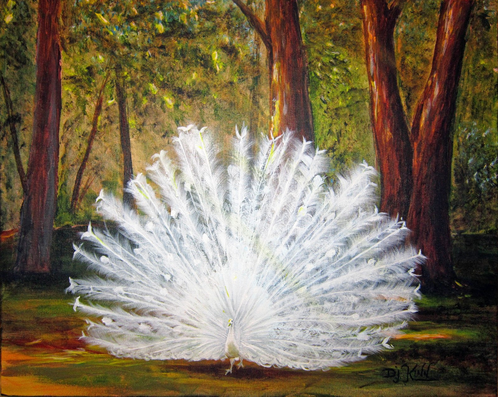 white peacock hd wallpapers full hd wallpapers