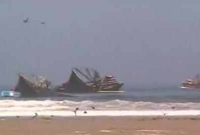 Pesca artesanal no es real que anchoveta peruana migre a for Ministerio de pesqueria