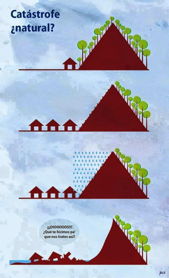 Resultado de imagen para imagen de bosque y huaico animado