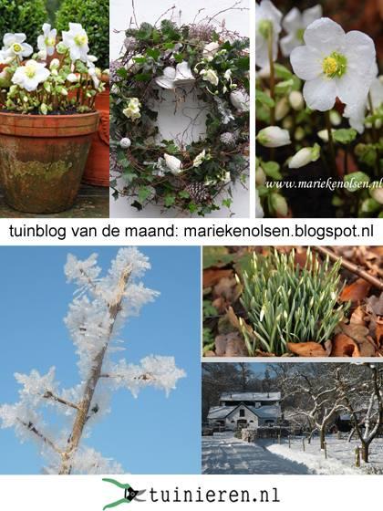 Tijdschrift:Tuinieren