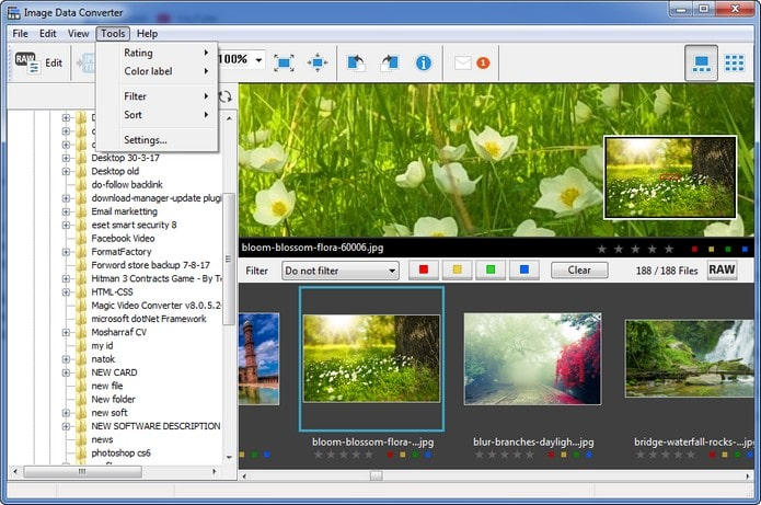 raw file converter windows 10