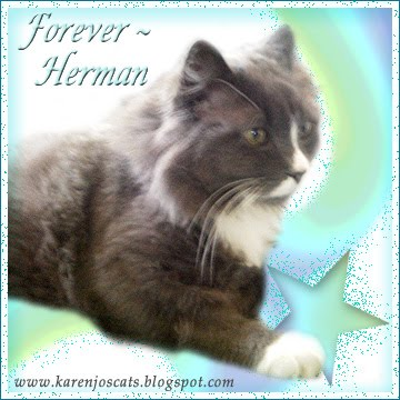 Fly Free Sweet Herman