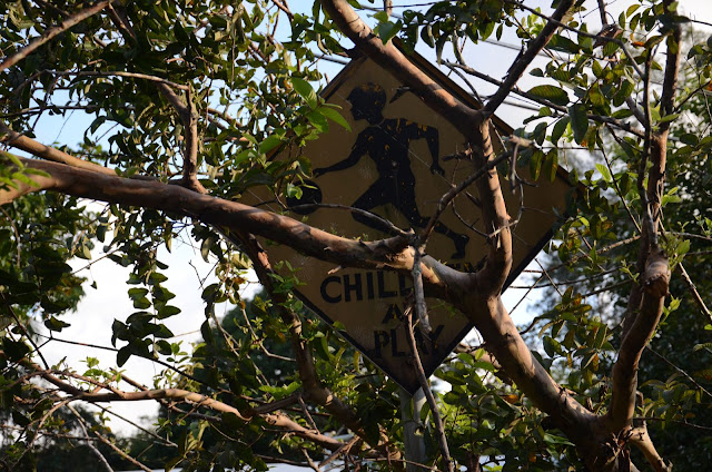 Children at play sign amidst tree branches