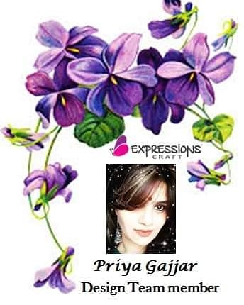DT member @ Expression crafts