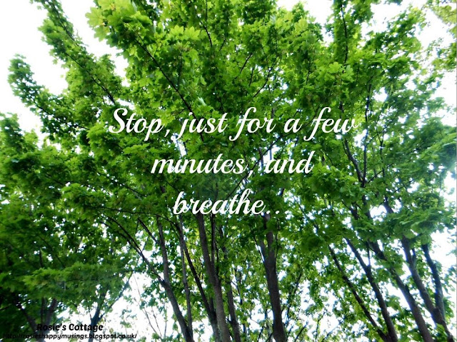 Beauty In Nature - Stop For A Minute & Breathe