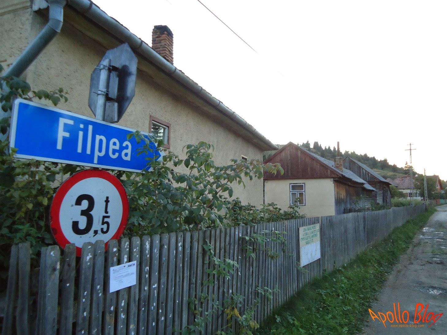 Indicator Filpea