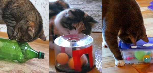 Сделать кормушку для котов