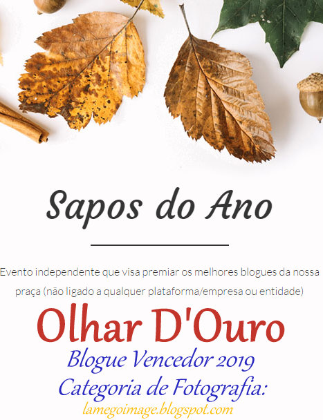 "Blogue vencedor dos ""Sapos do Ano"" na Categoria de fotografia!"