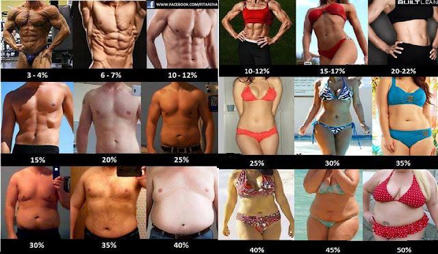 Poziom tłuszczu w ciele kobiety i mężczyzny