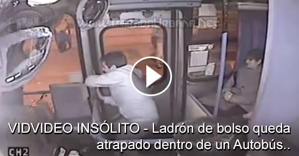 VIDEO INSOLITO - Ladron de bolso queda atrapado dentro de un Autobus..