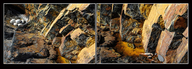 Diptych; Nova Scotia; Cliffs; Rocks; Sea; Ocean