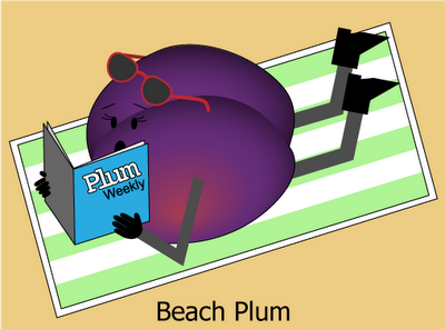 Beach Plum