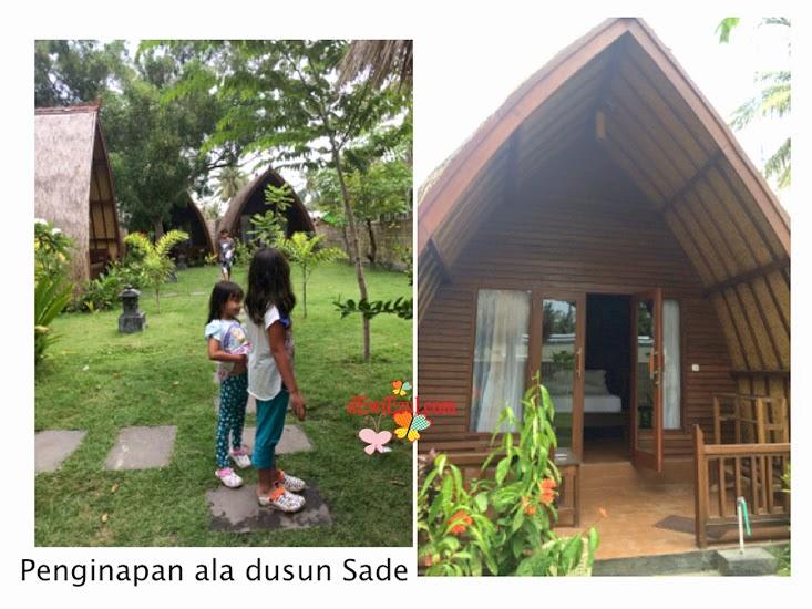 penginapan dusun sade di lombok