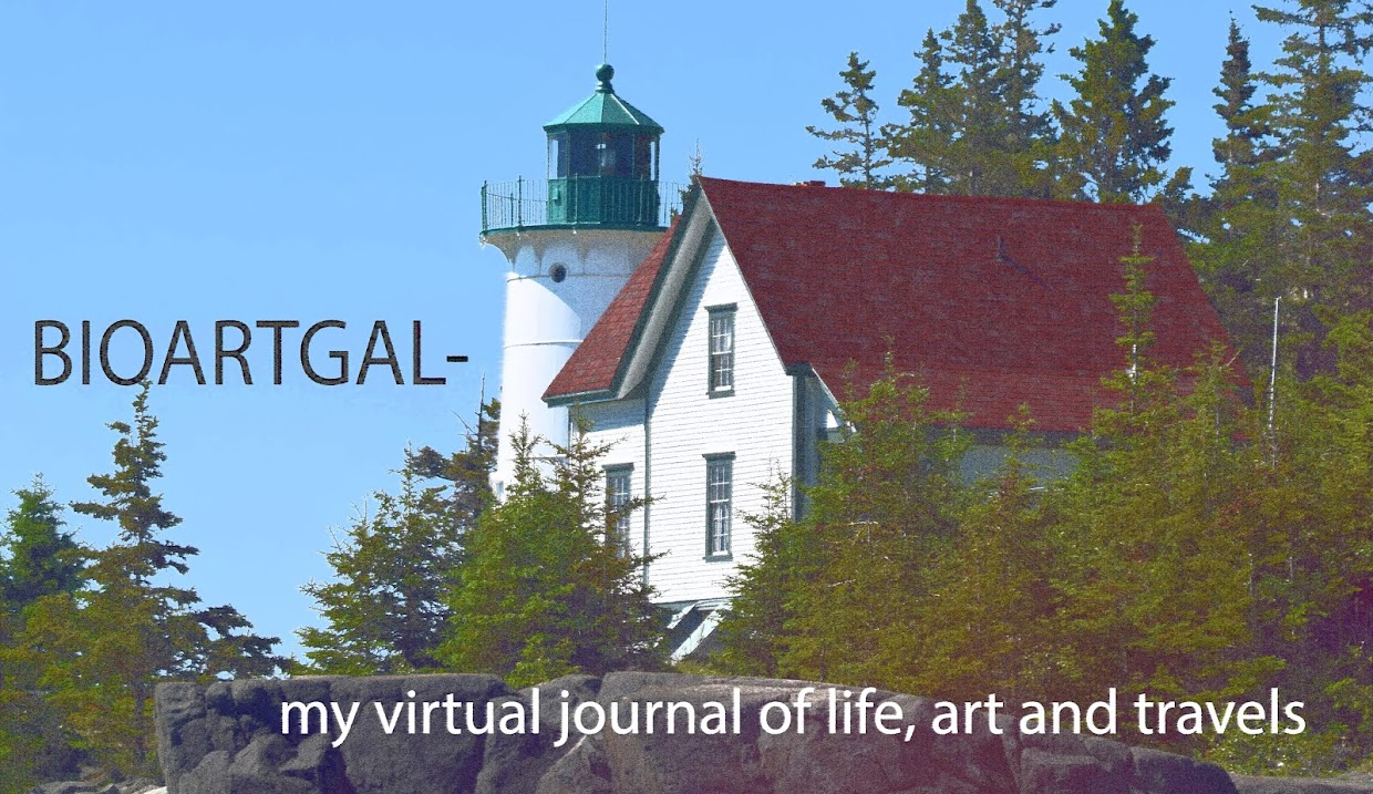 BioArtGal my virtual journal of stories, art and life