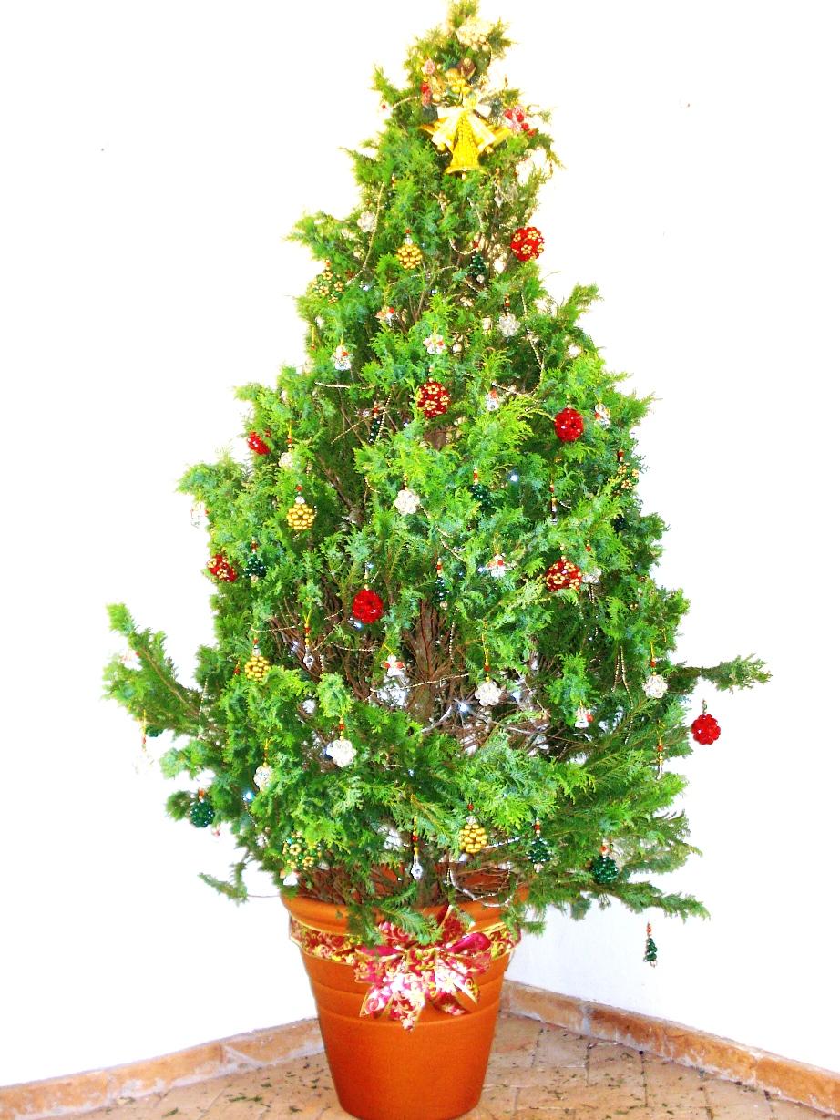 decorar arvore natal simples:FIOS DE LUZ ARTESANATO: ÁRVORE DE NATAL