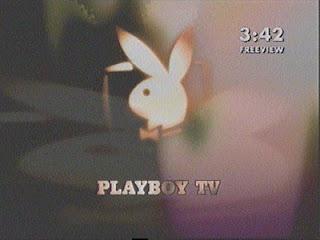 ver PLAYBOY TV en directo gratis por internet online