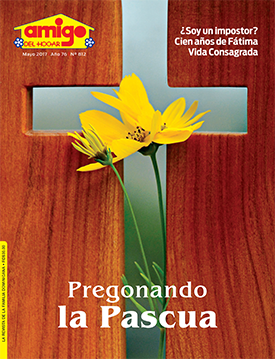 Amigo del Hogar 812 - Mayo 2017