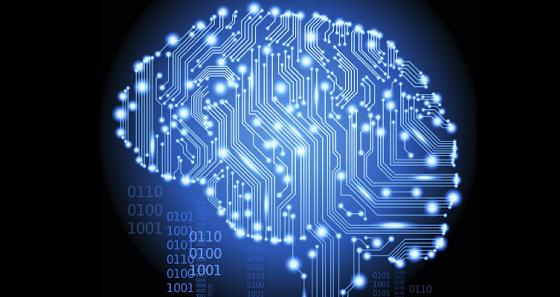 Human Brain Png Human Brain Project Hbp