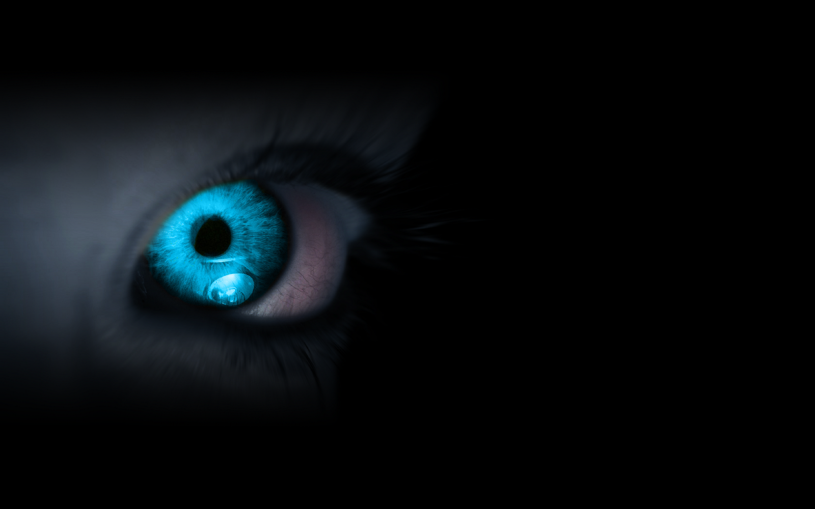 the daily desktop cool eyes 8d