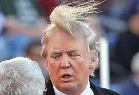 If you're bald, Donald...