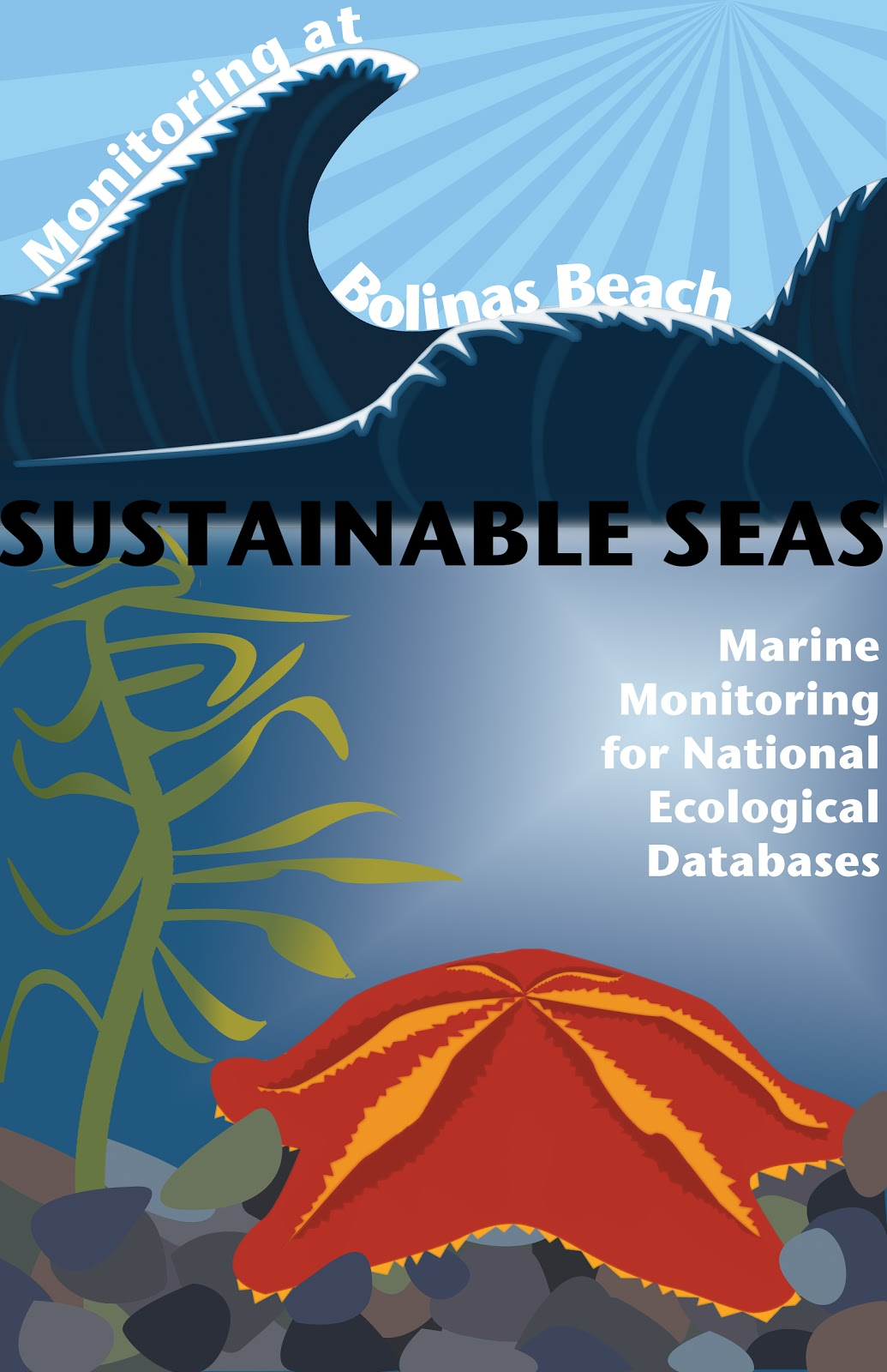 In this work, I created a poster for a club at Branson; I chose sustainable seas, a club which volunteers time to record data of marine life at beaches in ...