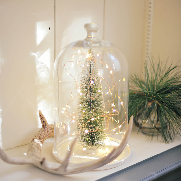 Holiday Christmas Glass Dome Terrarium Tree