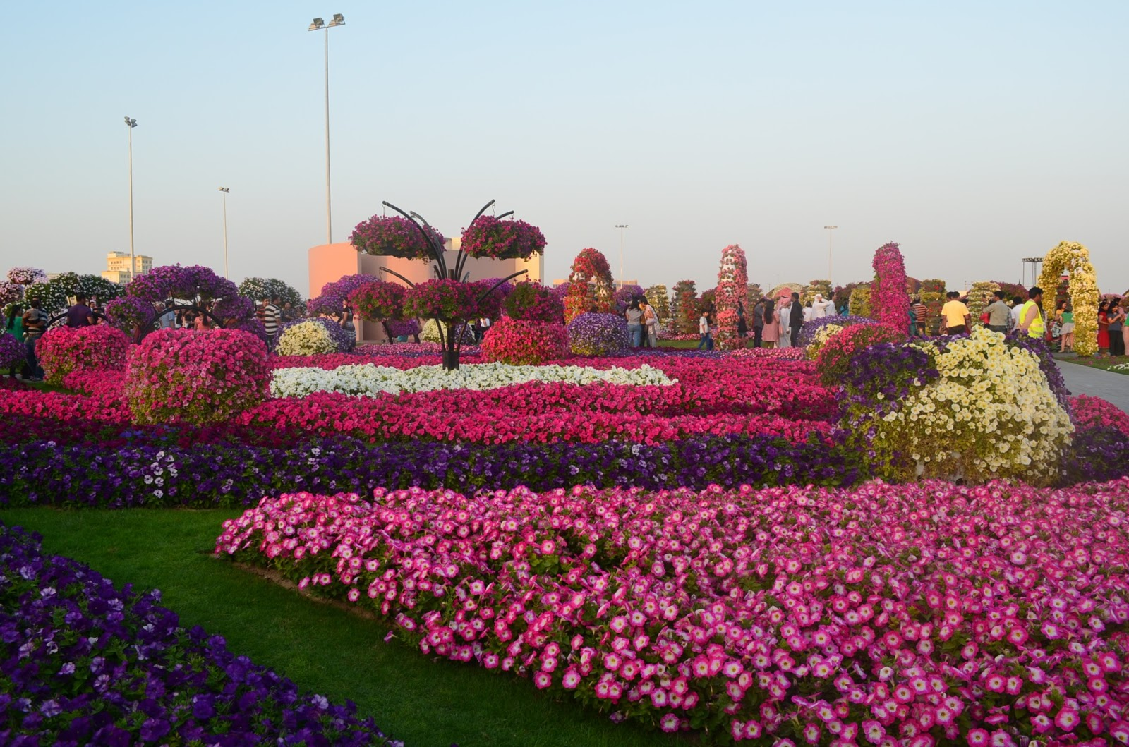 Places To Visit Dubai Miracle Garden