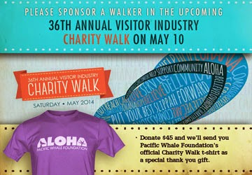 how to get sponsor for a charity walk