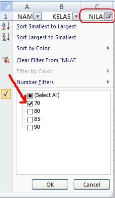 Filter Data Excel