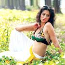 Mallu Lakshmi Rai Hot Pictures