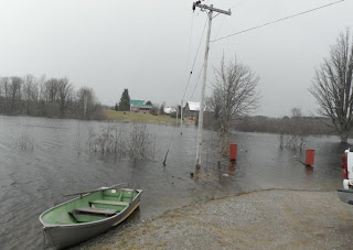 image Burnt River Flooding April 20,2013 shows boat by water and Hydro pole 1/20 submerged