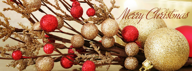 merry christmas decoration cover photos