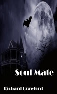 Soul Mate - Book One