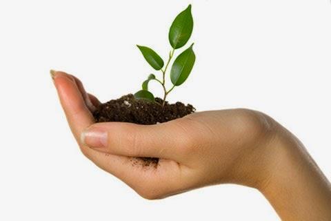 Tips Sukses Memulai Bisnis Kecil