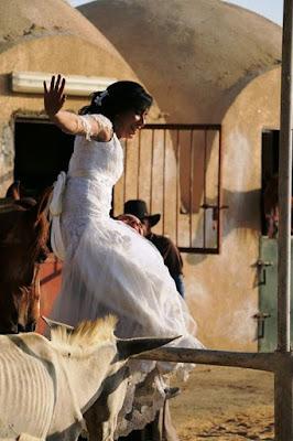 جمعية مشروع الحصان المصري