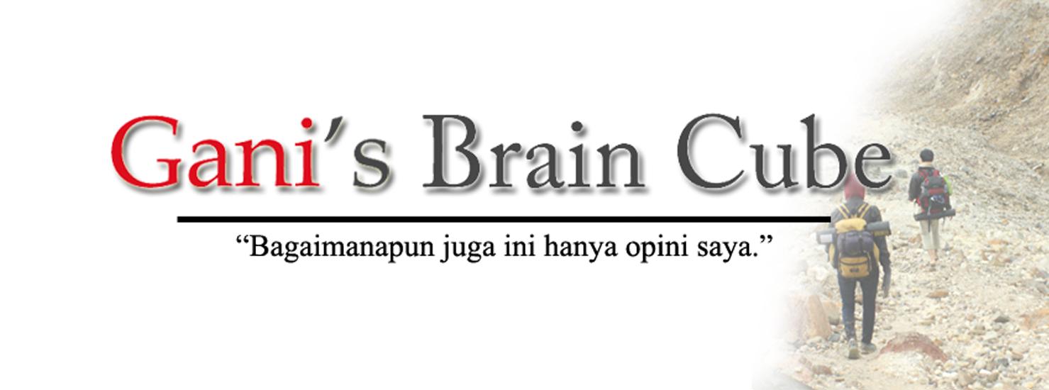 Gani's Brain Cube