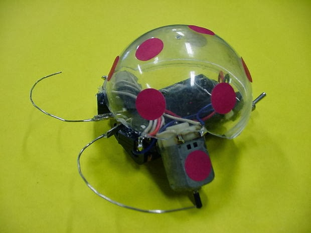 Robot Kumbang 1