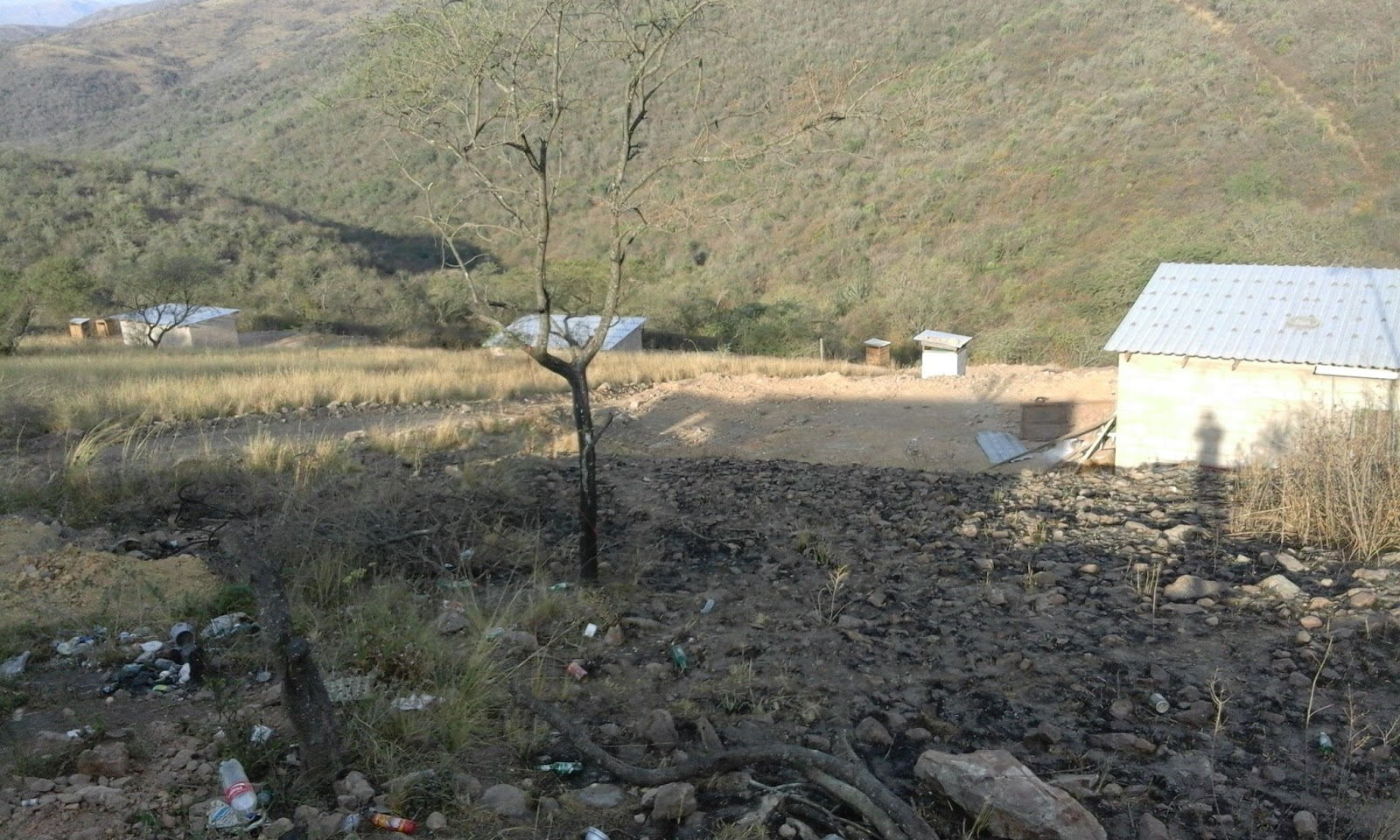 Image result for derelict farms south africa land distribution