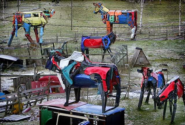 The Finnish sculptor Miina Äkkijyrkkä purchases dozens of used vehicles from dealers around Finland and uses them to create enormous cow sculptures!